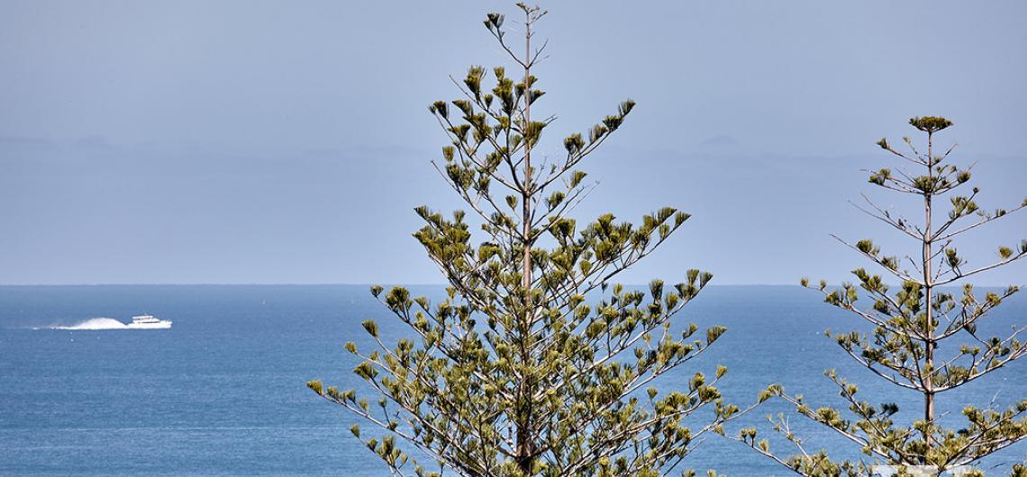 image for PANORAMIC INDIAN OCEAN VIEWS